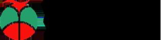トップマコート