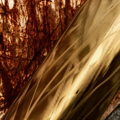 錆びた鉄とゴールデンチタンのコントラスト